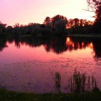 Сиреневый закат. :: Alexey YakovLev