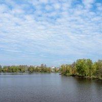 Разлив весенний 4 :: Виталий