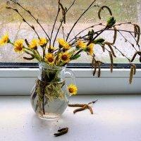 А за окном весенние дожди :: Павлова Татьяна Павлова