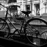 велосипед в велосипеде :: Svetlana AS