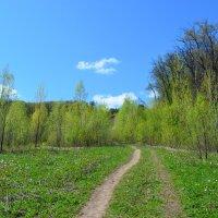 Апрель :: Наталья Тагирова