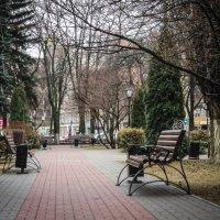В городском парке :: Лариса