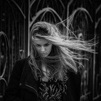 ! :: Sushicfoto Photographer