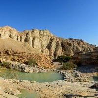 Оазис в пустыне.. :: Виктор Льготин
