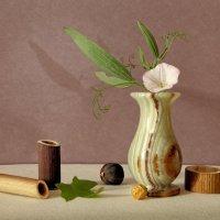 натюрморт с вазой :: Николай Овечко