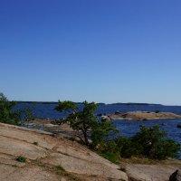 Скалистый берег Финского залива. :: Vladimir