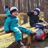 Малыши :: Николай Котко