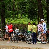 Команда велосипедистов в ботаническом саду :: Светлана