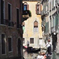 Каналы Венеции - аттракционы для туристов :: Ирина