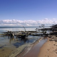 Пустынный берег Рижского Залива.. :: Эдвард Фогель