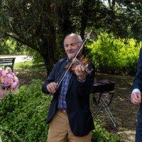 Уличный музыкант. В честь жениха и невесты! :: Witalij Loewin