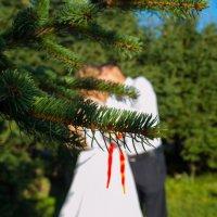 Свадьба) :: Татьяна