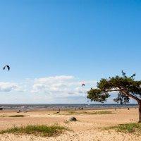 Активный отдых на заливе :: Виталий