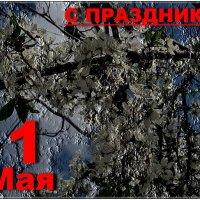 С праздником, дорогие друзья! :: Нина Корешкова