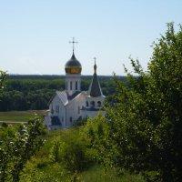 Свято-Троицкий Холковский мужской монастырь :: Ольга Мишустина