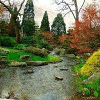 Камни, вода, деревья :: Nina Yudicheva