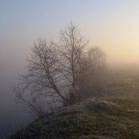 На краю земли :: Денис Зорин
