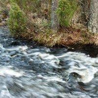 Весенние воды :: Наталья