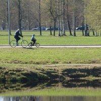 Выходной день в парке :: Михаил Юрьевич