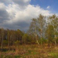 Пасха - 1 мая :: Андрей Лукьянов