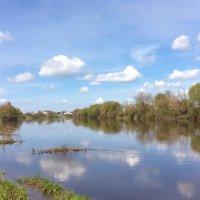 Мирно несёт свои воды Днепро*** :: Dogdik Sem