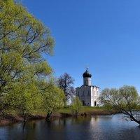 Церковь Покрова на Нерли . :: АЛЕКСАНДР СУВОРОВ
