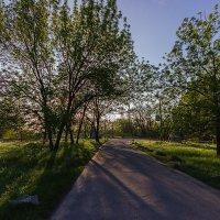 По дороге к Музею Казачества, Запорожье. :: Павел Петрович Тодоров