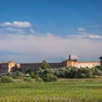 Меджибожский замок :: Sergey Bagach