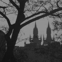 Это Прага :: Евгений Сладкевич