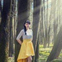 Свет в лесу :: Виктор Зенин