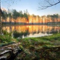 Просто майский рассвет... :: Андрей Войцехов