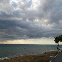 Порыв ветра :: Balakhnina Irina