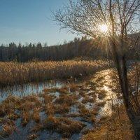 Солнечная дорожка :: vladimir Bormotov