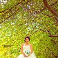 Невеста :: Светлана Светленькая