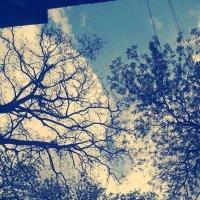 Весна в городе :: Valeriya Voice