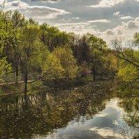 Природа как живопись :: Алексей Соминский