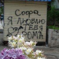 Медовый месяц май :: Алекс Аро Аро