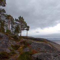 Камни Кий острова в Белом море. :: Марина Никулина