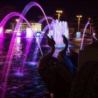 Лебеди у фонтана :: Pavel Stolyar