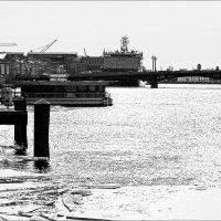 Нева. Вид с Дворцового моста :: Весна .