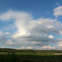 Облака - белогривые лошадки... :: Светлана Попова