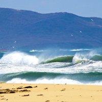 Бушуют волны, ветер свищет... :: Арина