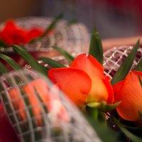 Розы :: Андрей Жуков