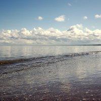 Рижский залив.. Балтика.. :: Эдвард Фогель