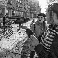 голубка :: Маргарита Лапина