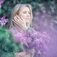 Сиреневая весна :: Марина Лялюк