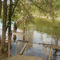 Затоплен мостик :: Мила