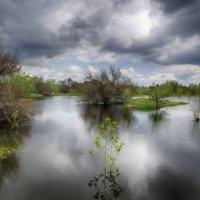 Разлив поймы в мае :: Олька Н