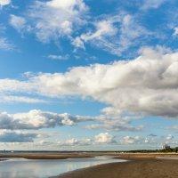 На Фиском заливе после отлива 3 :: Виталий