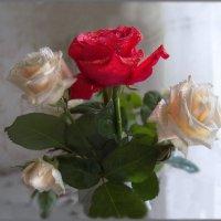 Мне подари букет из роз.... :: Людмила Богданова (Скачко)